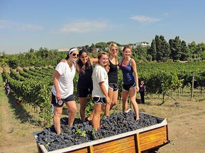 students harvesting grapes in Rome in the fall